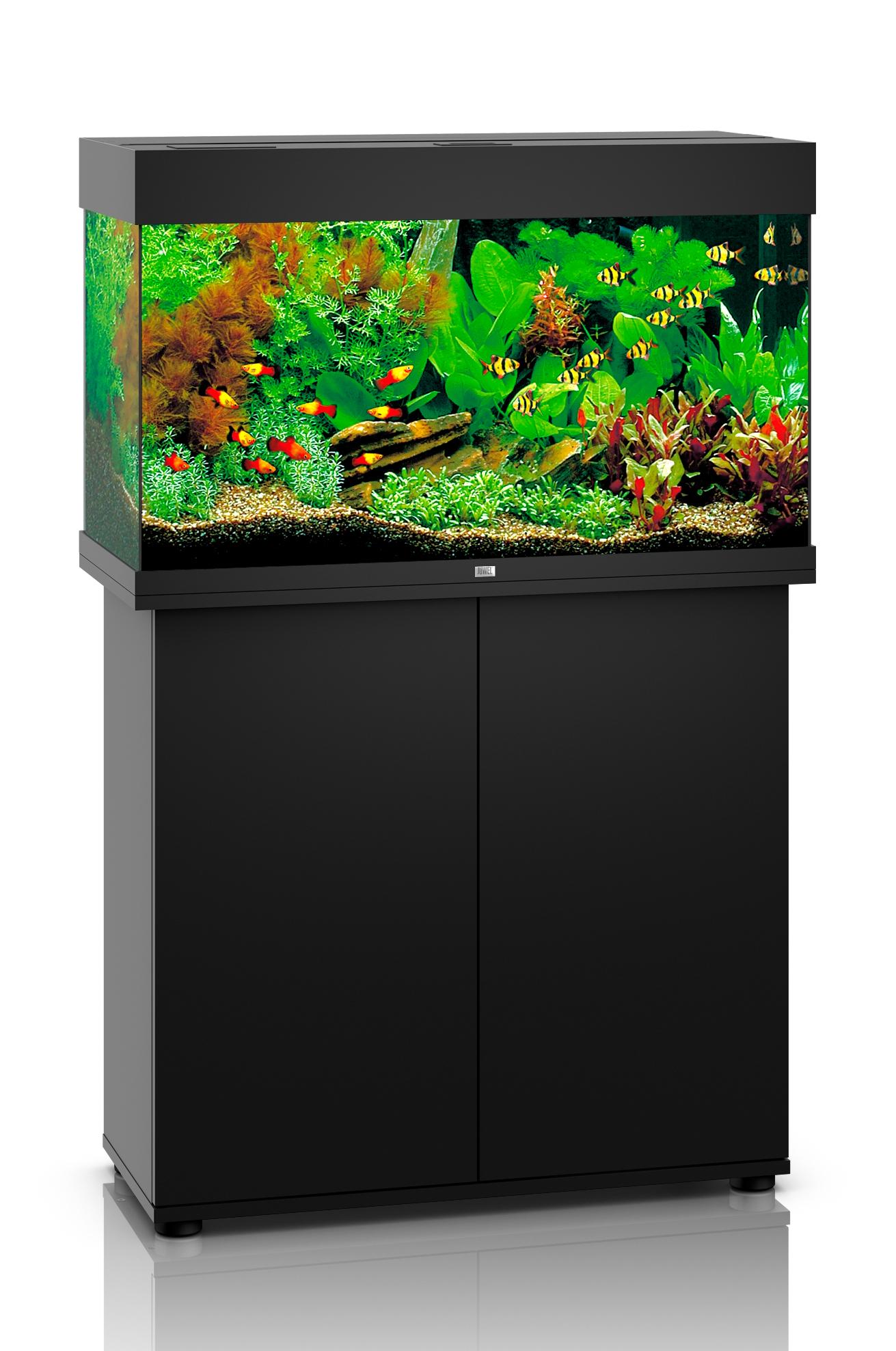 akvarium svart rio 125 led juwel juwel svart m bler akvarier akvaristik sortiment gibbon. Black Bedroom Furniture Sets. Home Design Ideas
