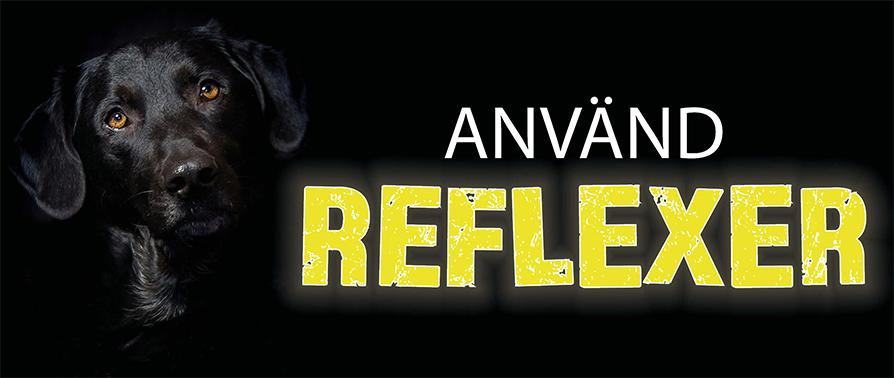 SE Reflex