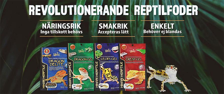 SE Hikari Reptile
