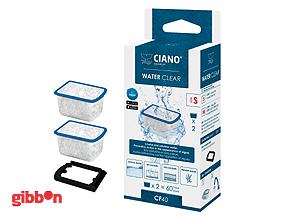Water Clear Small Ciano 2-pack