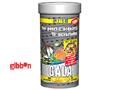 JBL Gala Premium