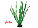 Plastväxt Vallisneria Hobby