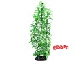 Plastväxt Heteranthera Hobby
