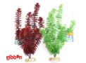 Plastväxt Aqua Forest Cyprus Sydeco